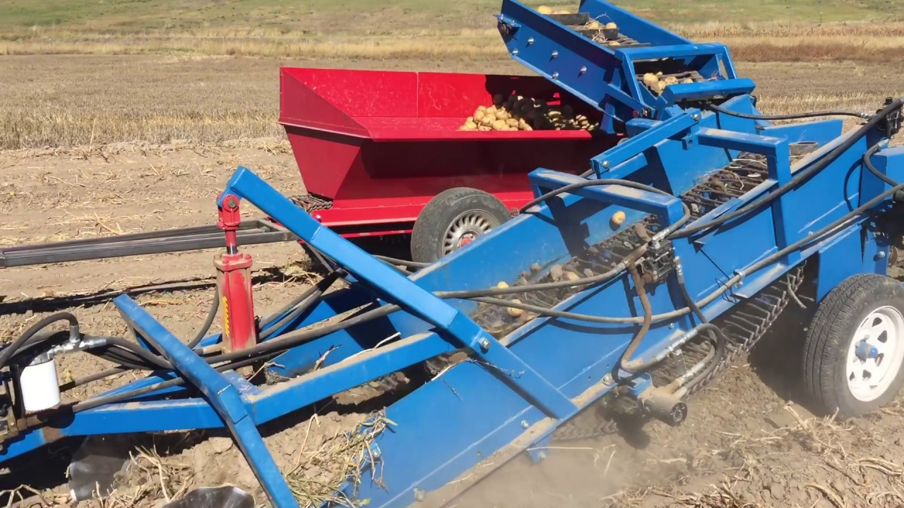 Us Small Farm One Row Potato Digger With Collection Wagon Youtube