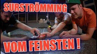 Unfassbar ekeligen Surströmming essen !  | ItsMarvin