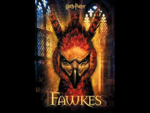 Harry Potter and the Chamber of Secrets Soundtrack - 02. Fawkes the Phoenix