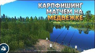 Карпфишинг матчем на Медвежке. Русская Рыбалка 4 [Стрим]