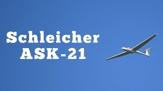 1987 Schleicher ASK21 Sailplane: Regular Car Reviews