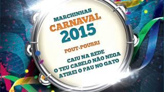 Baixar Marchinhas de Carnaval   Caiu na Rede   O Teu Cabelo Não Nega   Atirei o Pau no Gato