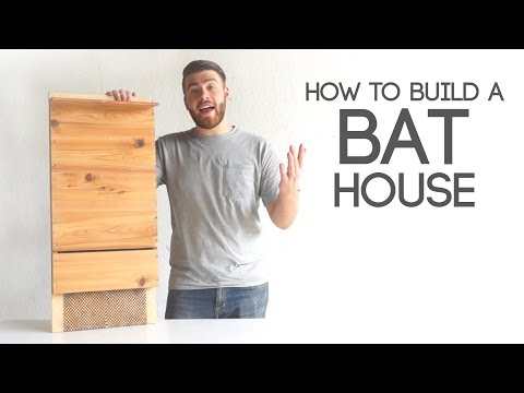 How To Build A Bat House | Modern Builds | EP. 40