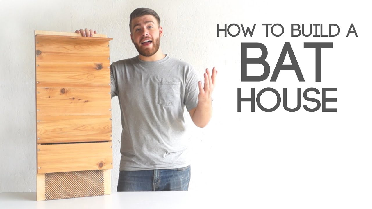 How To Build A Bat House Modern Builds EP 40 YouTube