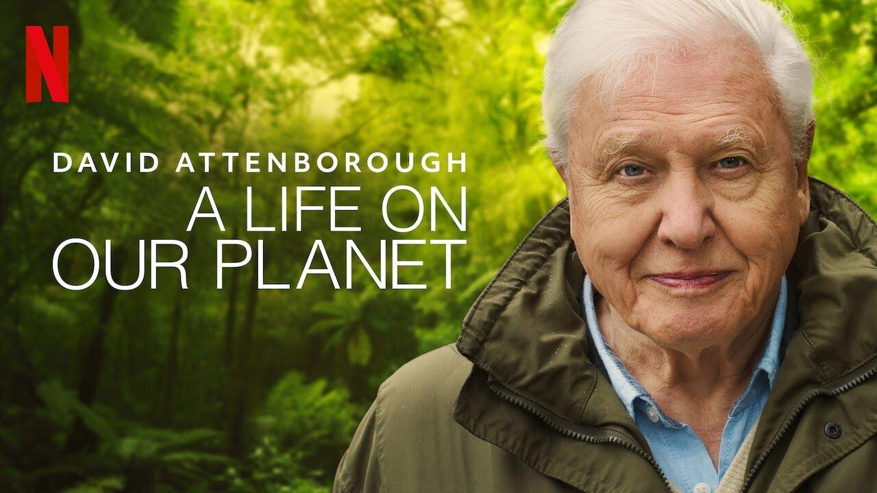Trailer David Attenborough Una Vida En Nuestro Planeta Youtube