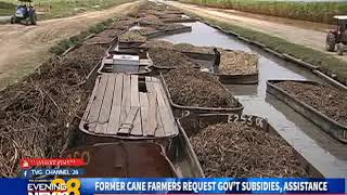 FORMER CANE FARMERS REQUEST GOV'T SUBSIDIES,-13/10/2018