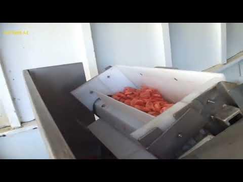 Креветки. Ловля и готовка на судне, в море