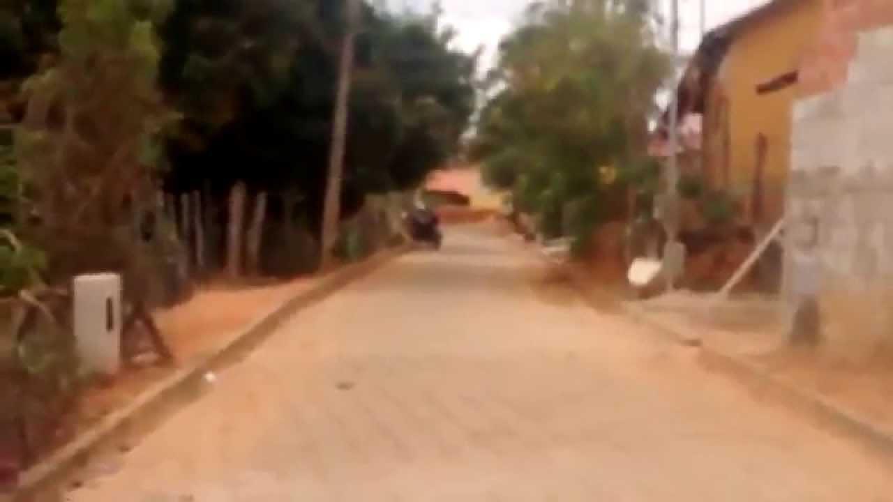 Goiabeira Minas Gerais fonte: i.ytimg.com