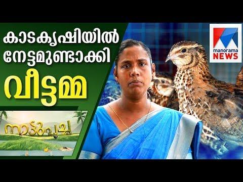 Successful kada farming by housewife | Nattupacha  | Manorama News