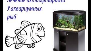 лечение ихтиофтириоза (манки) у аквариумных рыб(Купил новых рыбок и они заразили старичков ихтиком. пришлось на первых порах лечить рыбу народными методам..., 2013-02-16T17:49:00.000Z)