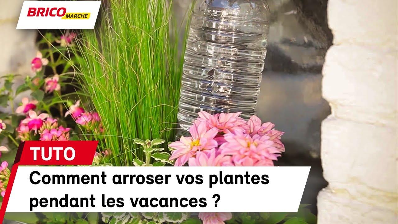 comment arroser ses plantes pendant les vacances ? (bricomarché