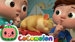 Baixar Class Pet Sleepover | CoComelon Nursery Rhymes & Kids Songs