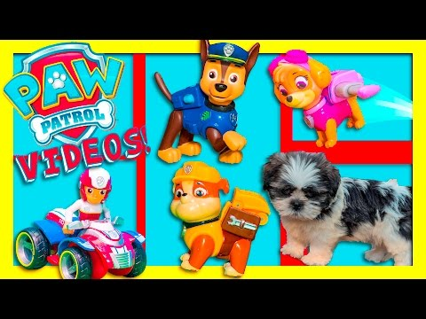 PAW PATROL Nickelodeon Wiggles and Paw Patrol Toys Funny Video compilation