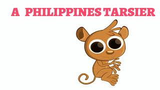 How To Draw A Real Philippines Tarsier