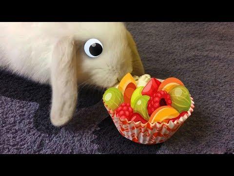 Яйца с сюрпризом. Барбоскины. Киндер Сюрприз. Много конфет. Видео для детей