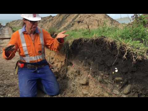 Earthquake and tsunami detectives at work: Paleoseismic work in Gisborne  (2017)