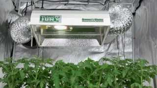 VSGC6000 Virtual Sun Enclosed Cool Tube Grow Light Hood
