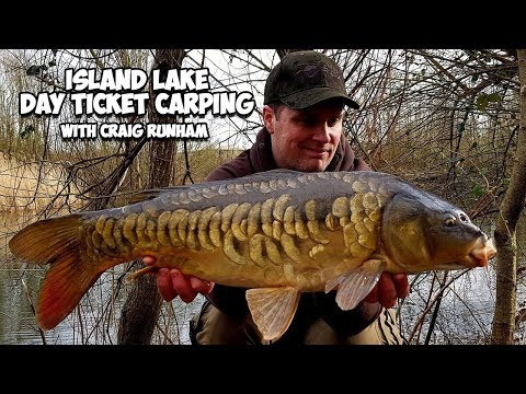 Day Ticket Carp Fishing At Theale Fisheries Island Lake