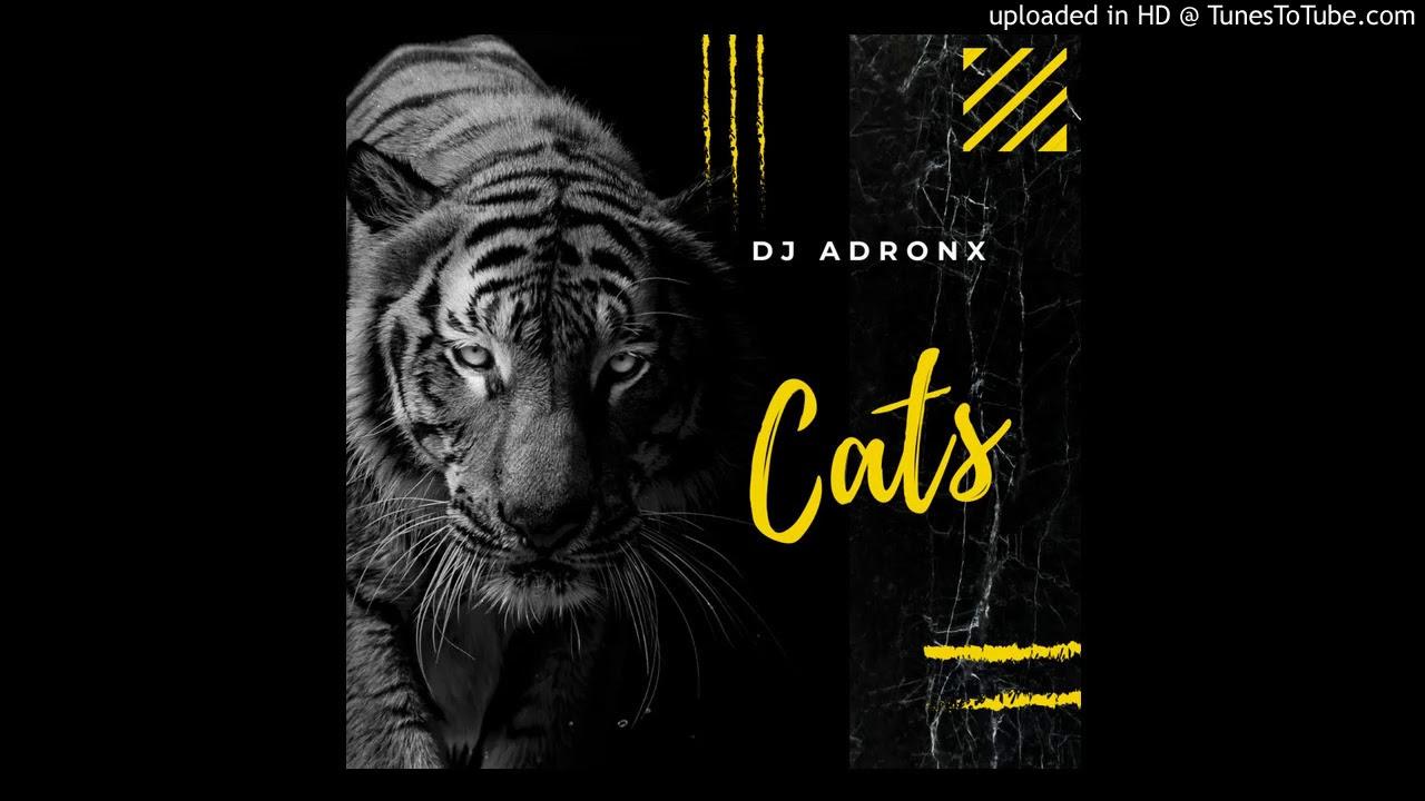 Download DJ ADRONX - CATS