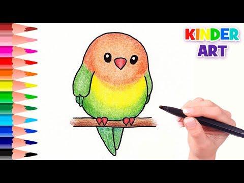 Как нарисовать легко попугая