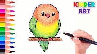 Как нарисовать попугая | How to draw a parrot