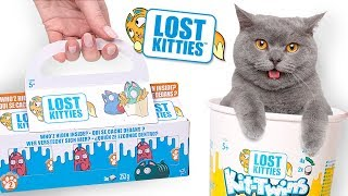 Lost Kitties Serien - Auspack-Session | Itty Bitty, Kit-Twins und Single