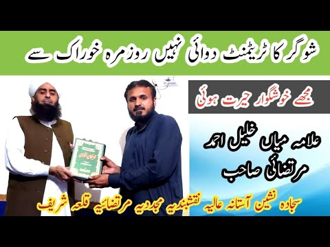 Download Mian khaleel Ahmed Murtazai sb Asif Shaafi sy mulaqat k bd izhar e khayal karty huwy