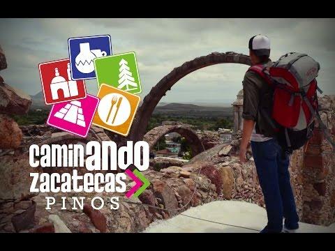 Caminando Zacatecas Pinos