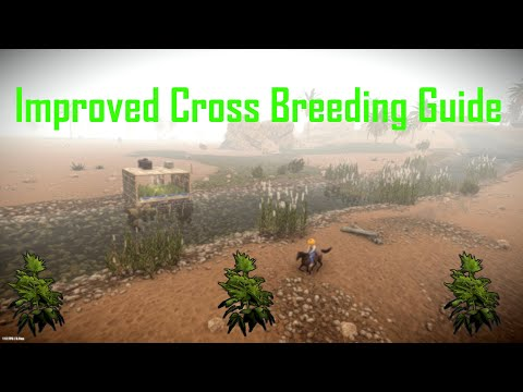 Rust | Ultimate Cross Breeding Guide (new/updated)