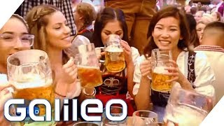 Oktoberfest - Wer hat am Meisten verdient  Galileo  ProSieben