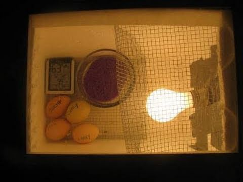 How to make an Egg Incubator - YouTube