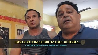 Route Of Transformation Of Body