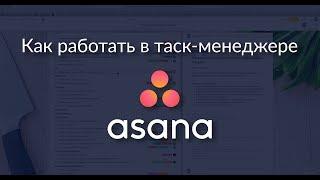 Как работать в Asana: подробный обзор таск-менеджера [4k]