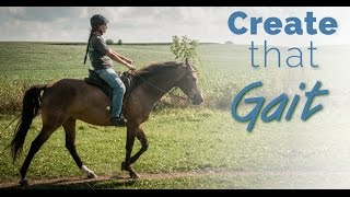 Training the Gaited Horse that Trots and Paces - before and after