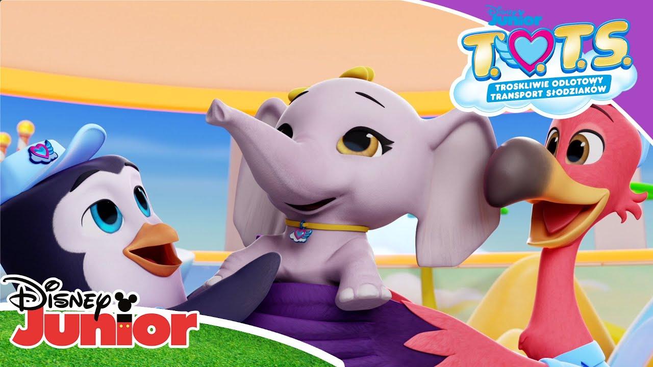 🐘 Słoń w pokoju | T.O.T.S | Disney Junior Polska