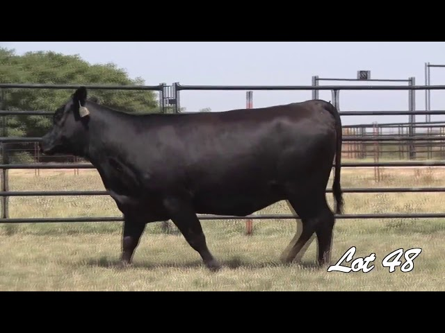 Pollard Farms Lot 48