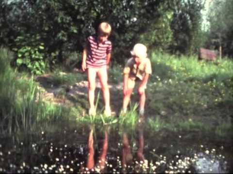 Film 6 mei 1981-augustus 1982