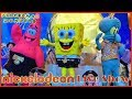SpongeBob Gold Live Stage Show