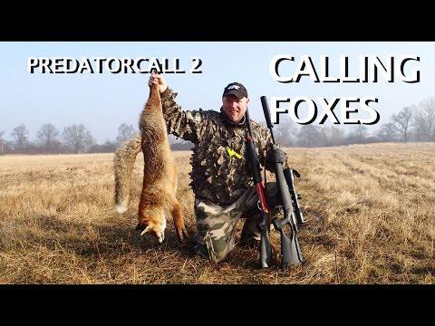 Kristoffer Clausen Calling Foxes, Predatorcall 2