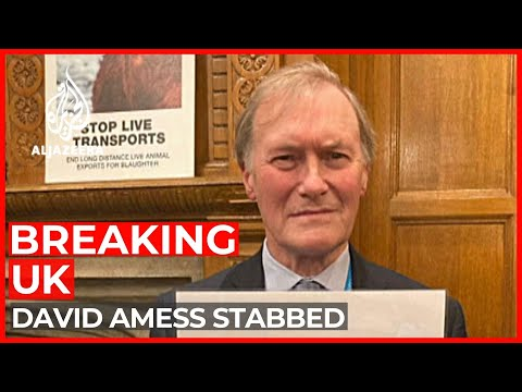UK MP stabbed at office during meeting with constituents