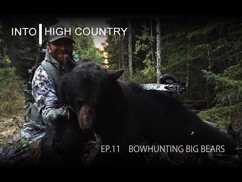 Bowhunting Big Bears