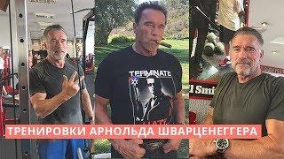 """Как Шварценеггер тренируется в 71 год / Подготовка к """"Терминатор-6"""""""