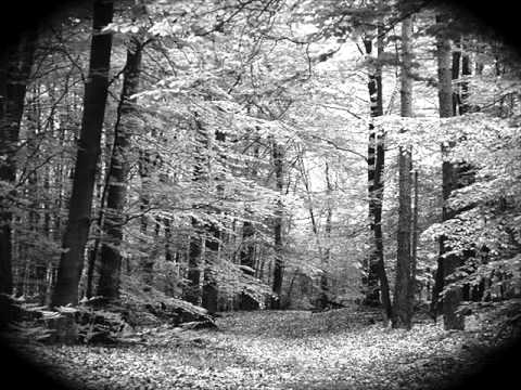 Erich Wolfgang Korngold - Piano Trio, Op. 1