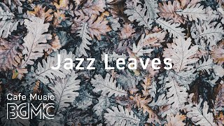 ❄️Winter Jazz Music - Chill Out Jazz Music For Study & Work