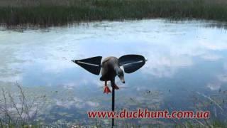 Чучело утки с машущими крыльями  Air Lucky Duck