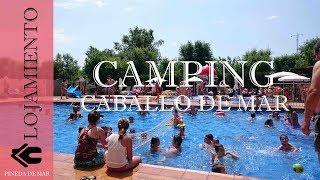 Camping Caballo de Mar | Pineda de Mar | Grup Senia