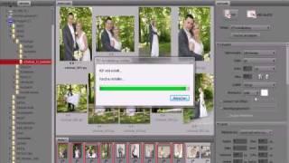 Adobe Bridge Bridge PDF Ausgabe -kontaktabzug