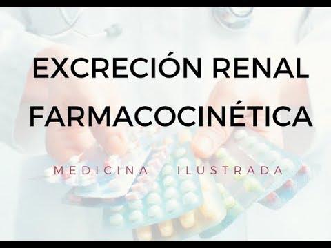 Excreción Renal - Farmacocinética - YouTube