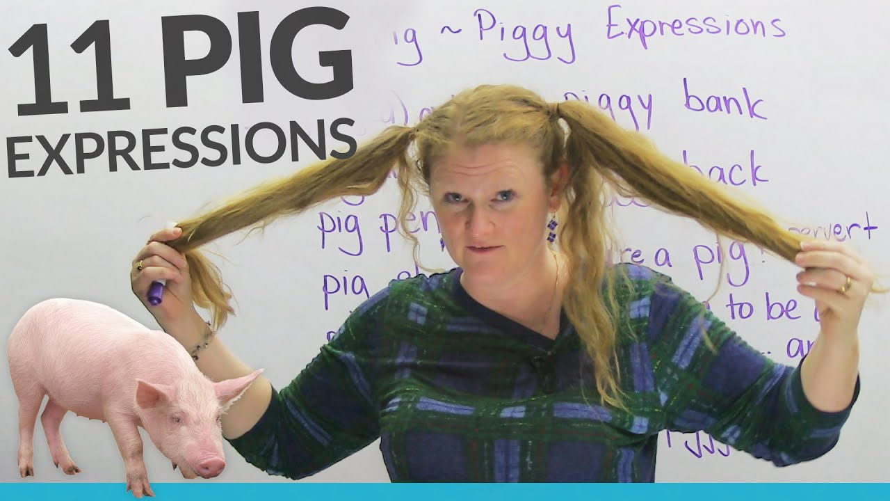 """11 PIG expressions in English: """"pig out"""", """"pig tails ..."""