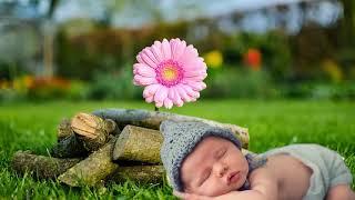 아기자장가무료듣기 |아기수면음악 낮잠음악| 신생아 음악 자장가노래 | 유아자장가 낮잠잘때듣는음악 2